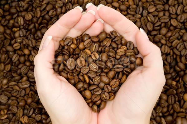 Oogst koffiebonen vers achtergrond zaad Stockfoto © winterling
