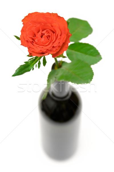 Gül şişe kırmızı gül şarap şişesi sığ alan Stok fotoğraf © winterling