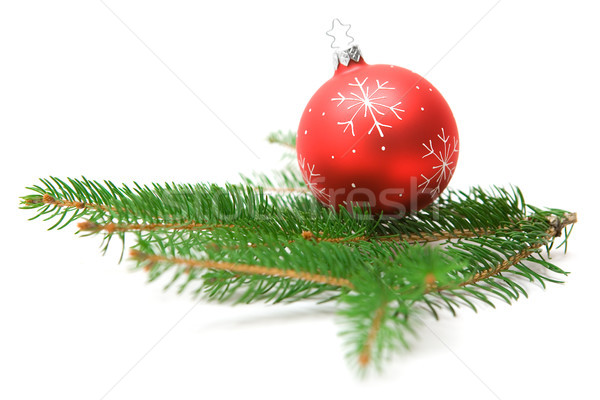 Stockfoto: Christmas · snuisterij · tak · kerstboom · bal
