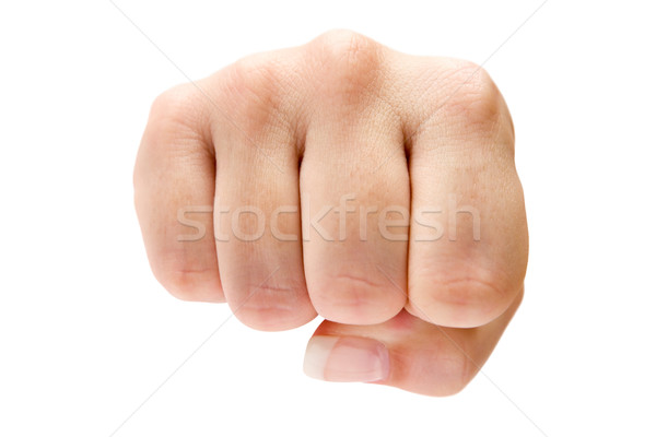 Fist Stock photo © winterling
