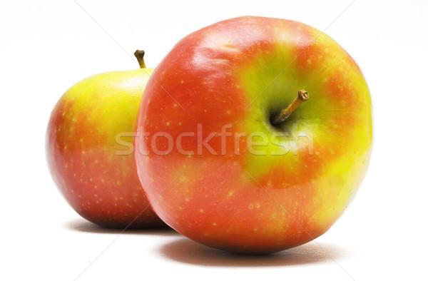Dois fresco maçãs isolado branco comida Foto stock © winterling