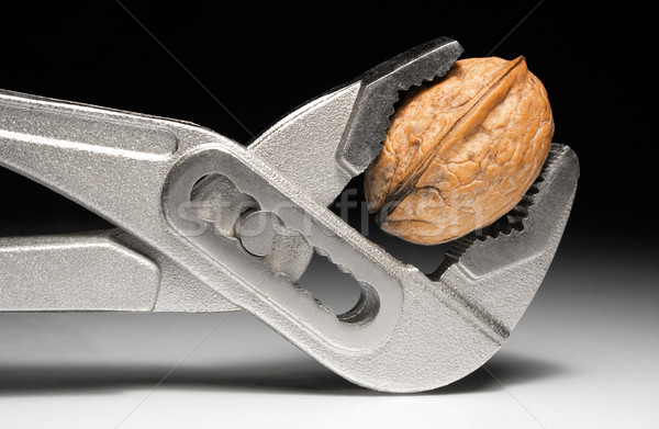 Metal Pliers and Walnut Stock photo © winterling