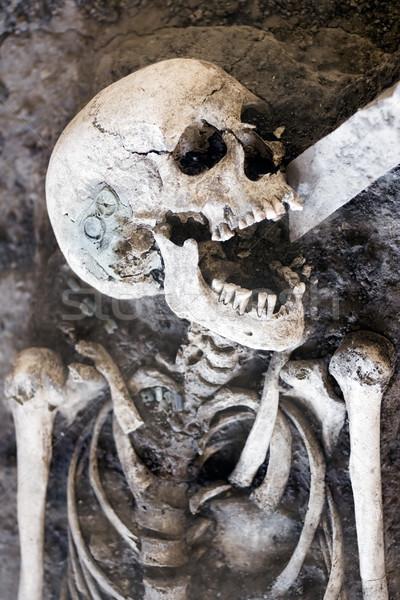 Nevet csontváz boldog test halál száj Stock fotó © winterling