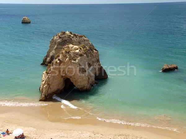 Yalnız kaya okyanus etki erozyon su Stok fotoğraf © wjarek