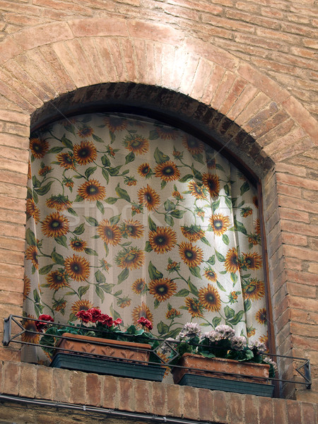 Stock photo: Adorable window with sunflowers on veils - Tuscany