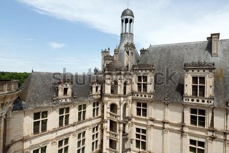 Castello valle Francia panorama mondo finestra Foto d'archivio © wjarek