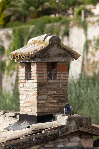 the old roof tile and brick chimney Stock photo © wjarek