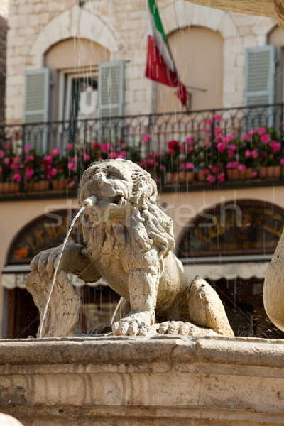 Lion fountain in the main town square of Assisi Stock photo © wjarek