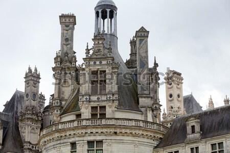 Koninklijk kasteel vallei Frankrijk landschap wereld Stockfoto © wjarek