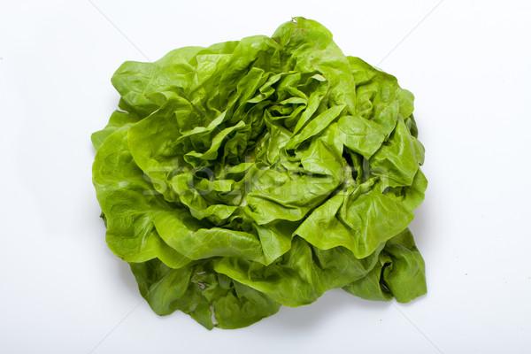 Frischen grünen Salat Salat isoliert weiß Stock foto © wjarek