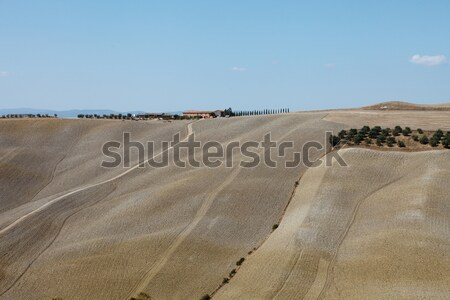 The hills around Pienza and Monticchiello  Tuscany, Italy. Stock photo © wjarek