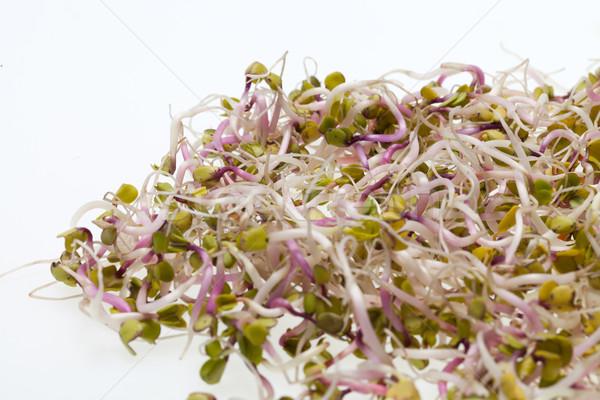 Stockfoto: Gezonde · voeding · vers · geïsoleerd · witte · abstract · blad