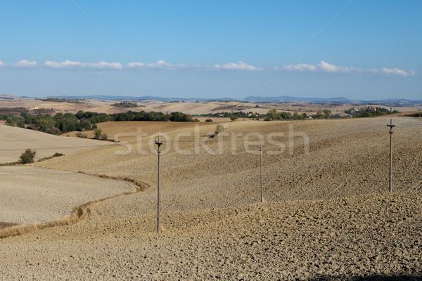 Tájkép Toszkána Olaszország fa út nyár Stock fotó © wjarek