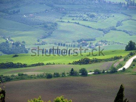 The hills around Pienza and Monticchiello  just after sunrise Stock photo © wjarek
