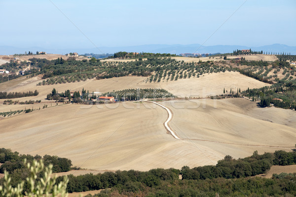 The hills around Pienza and Monticchiello  Tuscany Stock photo © wjarek