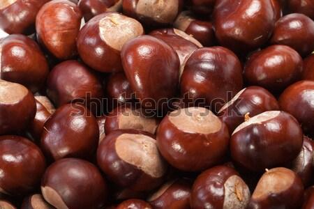 зрелый фрукты фон группа кожи завода Сток-фото © wjarek