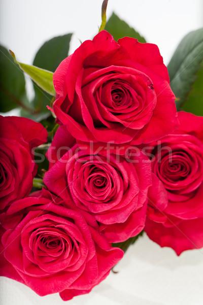 Kırmızı gül çiçekler bahar düğün kadın Stok fotoğraf © wjarek