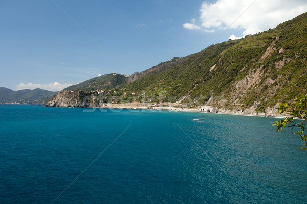 the picturesque coastline of the Cinque Terre Stock photo © wjarek