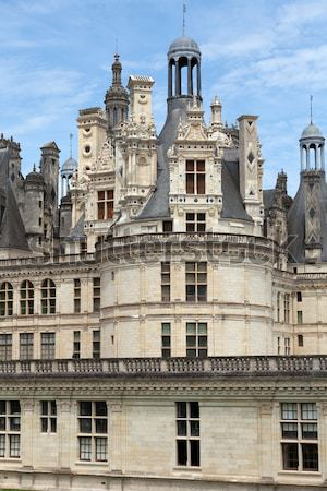 Spiral staircase in the Chambord castle, Loire Valley, France Stock photo © wjarek