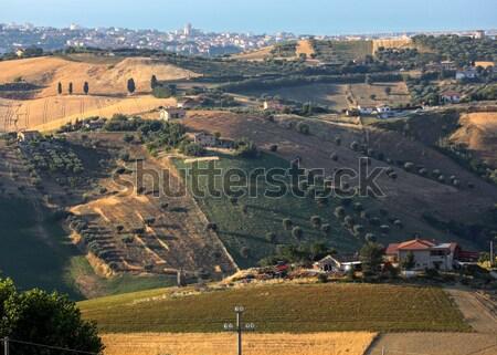 Stok fotoğraf: Tepeler · etrafında · gündoğumu · Toskana · İtalya · ağaç