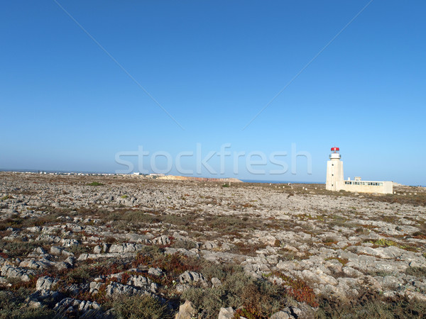 Fortress of Sagres Point was founded by Henry the Navigator.  Stock photo © wjarek