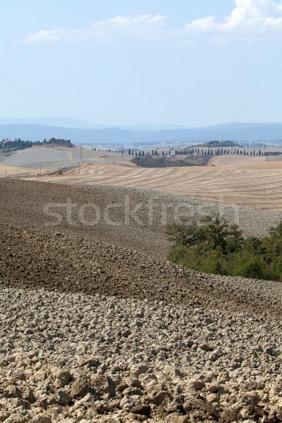 Manzara Toskana İtalya güzellik yaz takvim Stok fotoğraf © wjarek