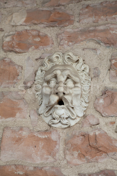 the face of stone Stock photo © wjarek