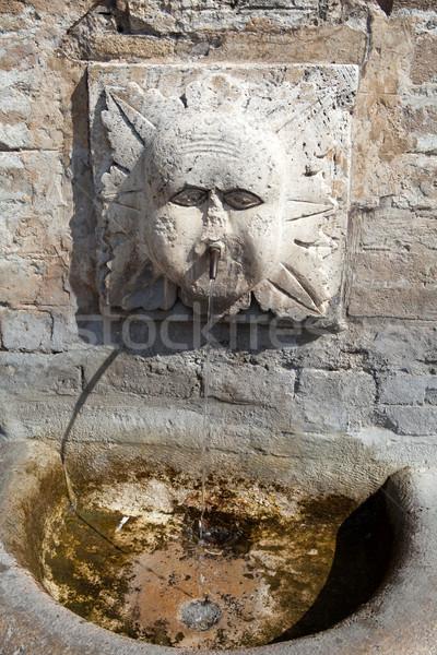 Stone fountain. Assisi. Umbria Stock photo © wjarek