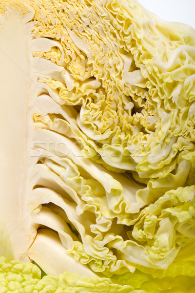 fresh savoy cabbage Stock photo © wjarek