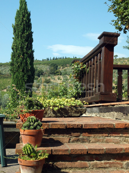 Stock photo: terrace with the view on vineyards in Tuscany
