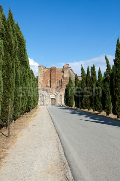 Alley near the Abbey of San Galgano Stock photo © wjarek