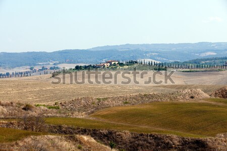 Tájkép Toszkána Olaszország szépség nyár naptár Stock fotó © wjarek