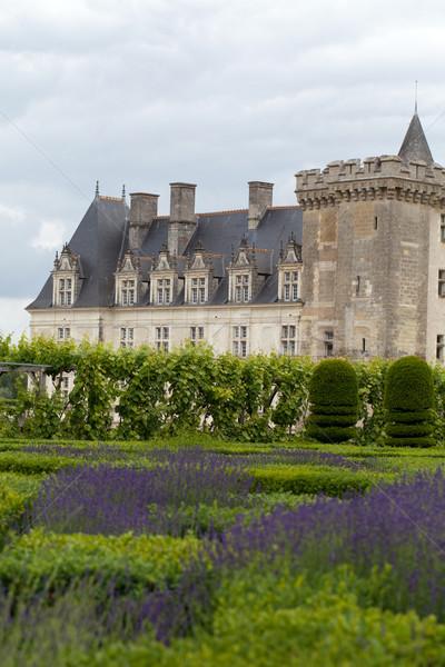 Foto stock: Jardins · vale · França · flor · jardim · fundo