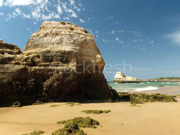 A section of the idyllic Praia de Rocha beach on the Algarve region.  Stock photo © wjarek