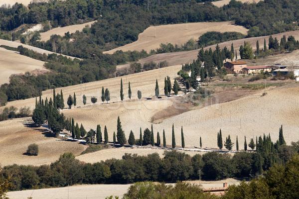 The hills around Pienza and Monticchiello   Stock photo © wjarek