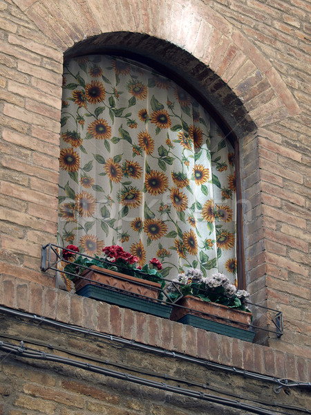 Adorable window with sunflowers on veils - Tuscany