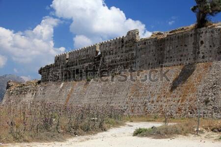 Ruinen Burg Dorf Blume Gebäude Stock foto © wjarek
