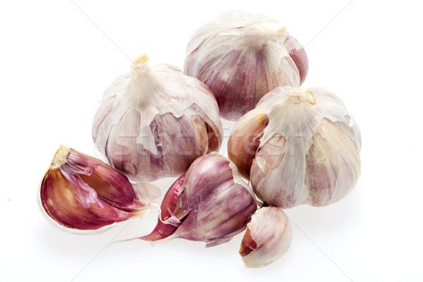 fresh garlic   Stock photo © wjarek