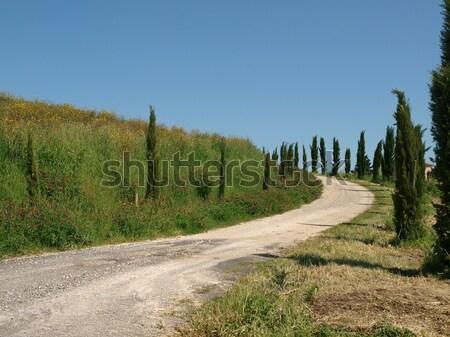 The landscape of the Tuscany. Italiy Stock photo © wjarek