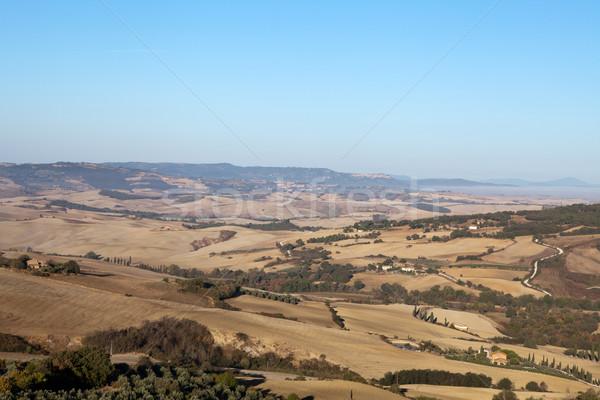 Stok fotoğraf: Tepeler · etrafında · Toskana · İtalya · ağaç · manzara