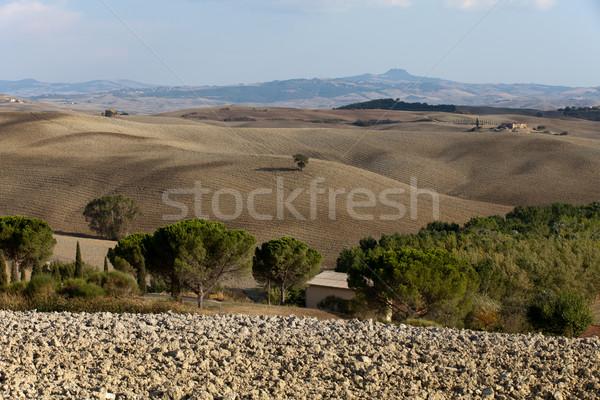 Manzara Toskana İtalya doğa yaz alan Stok fotoğraf © wjarek