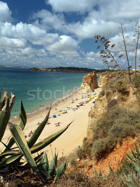 Picturesque beaches of the Algarve Stock photo © wjarek