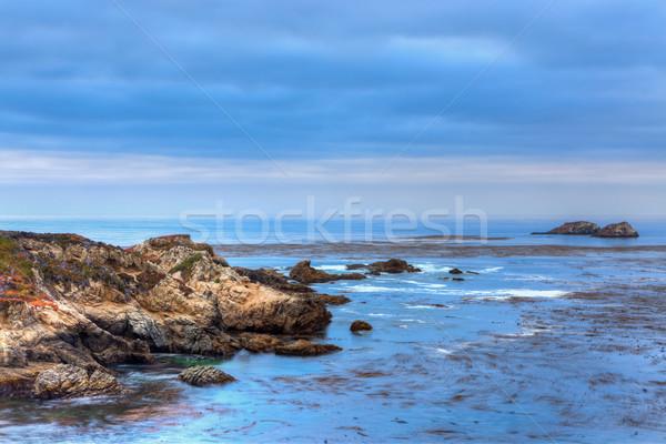 Garrapata State Beach  Stock photo © wolterk