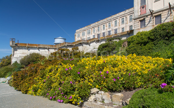 Prison Gardens at Alcatraz Island Prison Stock photo © wolterk