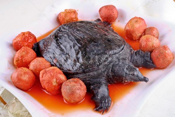 Turtle and taro Stock photo © wxin