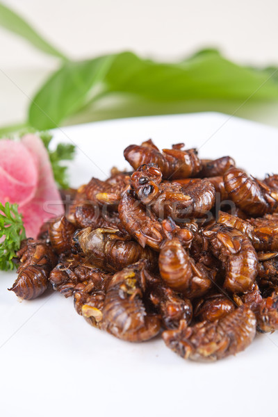 Sült étel étterem szakács étel Kína Stock fotó © wxin