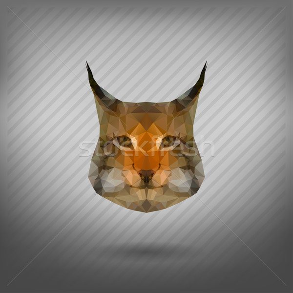 Abstract triangolo lince foresta cat design Foto d'archivio © wywenka