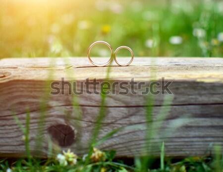 Fedi nuziali due legno giardino amore bellezza Foto d'archivio © X-etra
