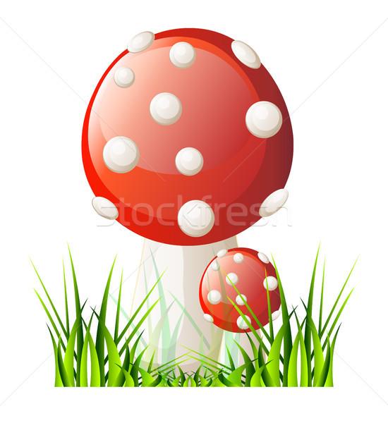 Vetor vermelho cogumelo isolamento branco comida Foto stock © X-etra