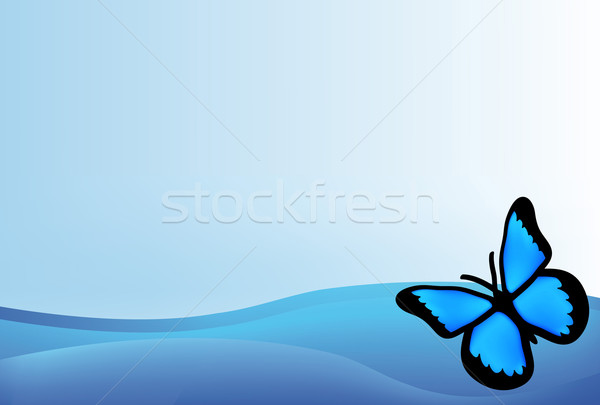 blue butterfly Stock photo © X-etra